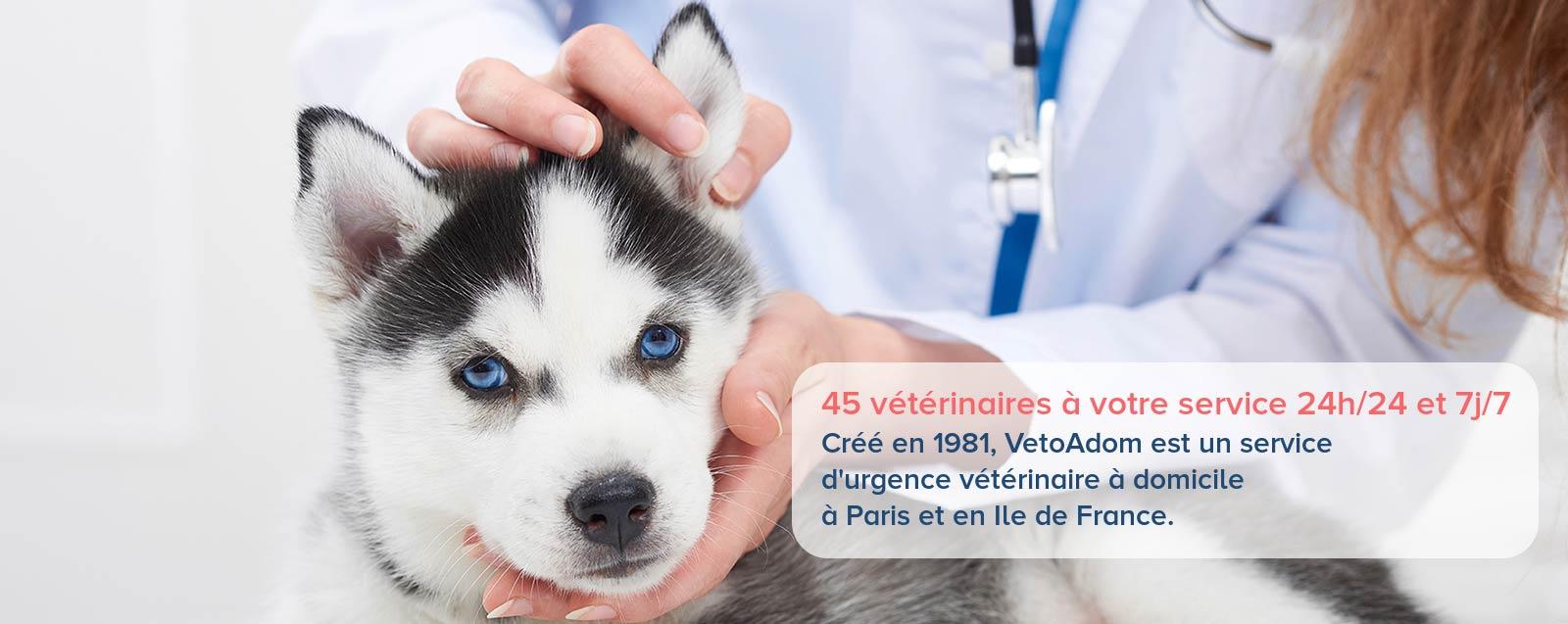 VetoAdom - Urgences vétérinaires à domicile 9h/9 - Paris / Ile