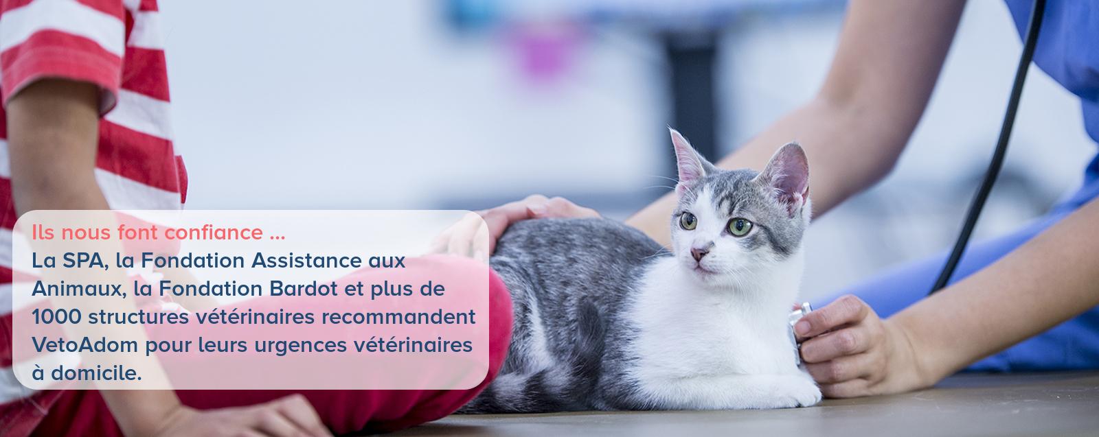 VetoAdom - Urgences vétérinaires à domicile 10h/10 - Paris / Ile